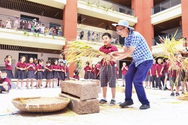 Trường tiểu học Trung Quốc dạy học sinh cách thu hoạch lúa - 2