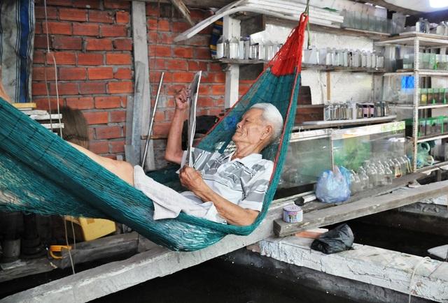 Cụ ông 83 tuổi gắn bó với nghề nuôi cá cảnh từ 6 cặp cá thia lia - 5