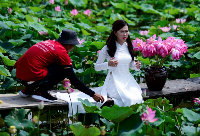 Du khách mê mẩn với đầm sen nở rực ở ngoại thành Sài Gòn - 7