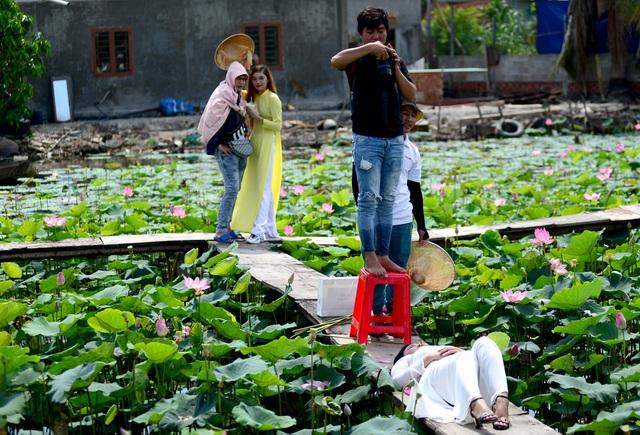 Du khách mê mẩn với đầm sen nở rực ở ngoại thành Sài Gòn - 4