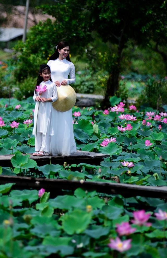 Du khách mê mẩn với đầm sen nở rực ở ngoại thành Sài Gòn - 3
