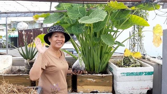Quả trĩu cành, gà đẻ trứng trên sân thượng của bà chủ nhà trọ Sài Gòn - 5