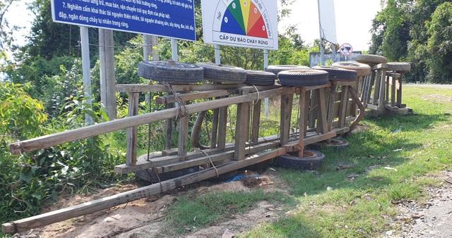 Thêm thủ đoạn phá rừng tại Phú Yên: Dùng cả đàn trâu kéo gỗ đi tiêu thụ! - 3
