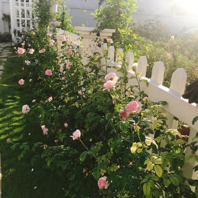 Biệt thự nhà vườn ngập tràn các loại hoa của gia đình ở Bình Dương - 12
