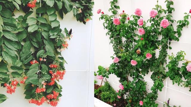 Biệt thự nhà vườn ngập tràn các loại hoa của gia đình ở Bình Dương - 13