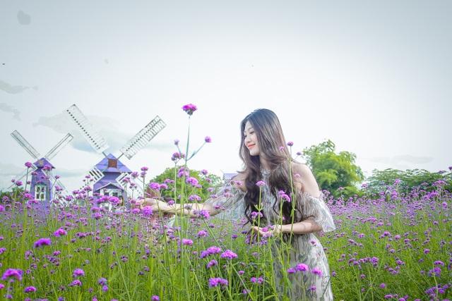 Hà Nội: Rủ nhau check-in với cánh đồng oải hương thảo đẹp như trời Tây - 5