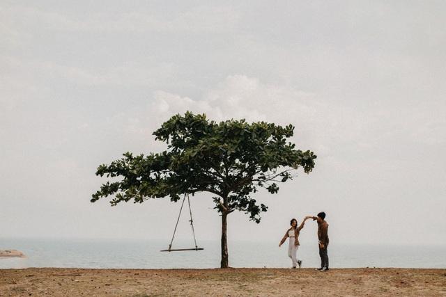 Đẹp ngỡ ngàng cây bàng cô đơn ở Bình Thuận - 3