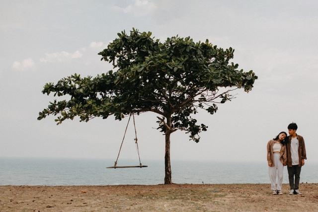 Đẹp ngỡ ngàng cây bàng cô đơn ở Bình Thuận - 1