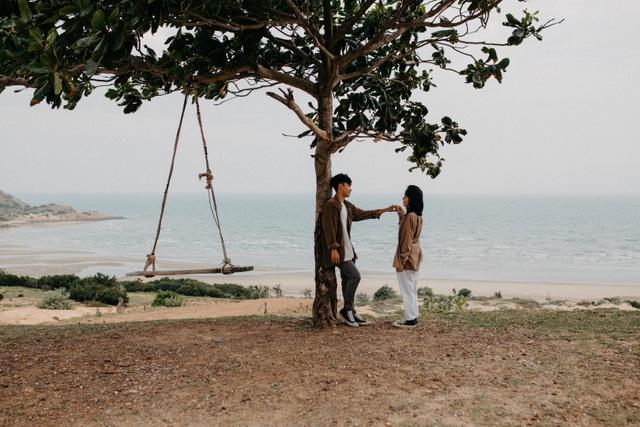 Đẹp ngỡ ngàng cây bàng cô đơn ở Bình Thuận - 2