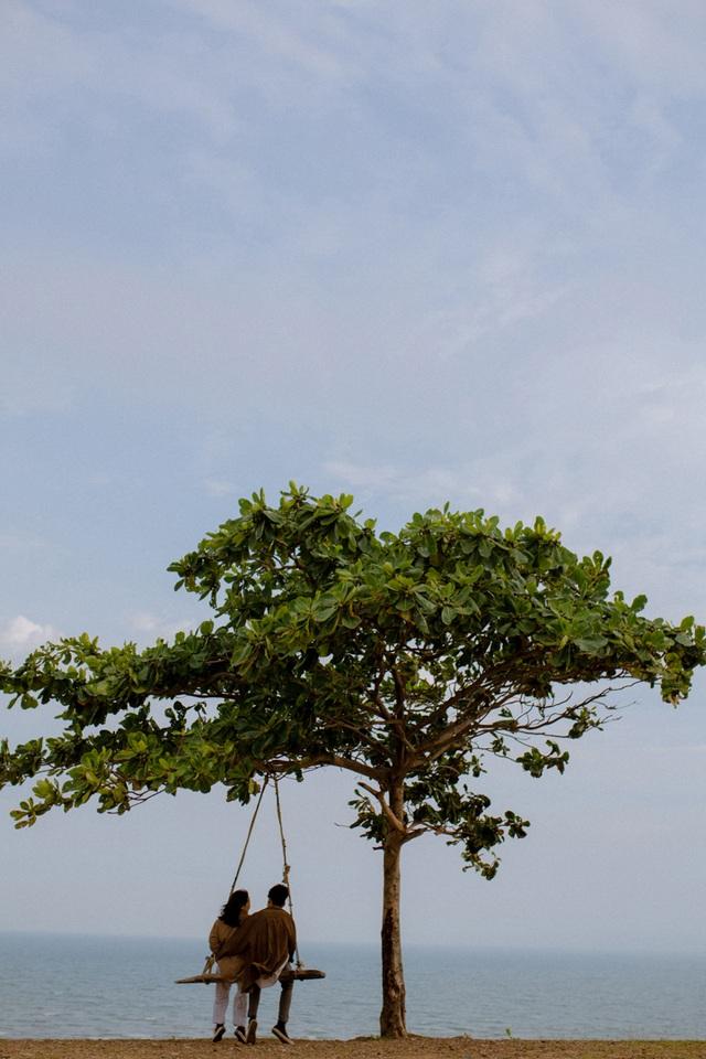 Đẹp ngỡ ngàng cây bàng cô đơn ở Bình Thuận - 4