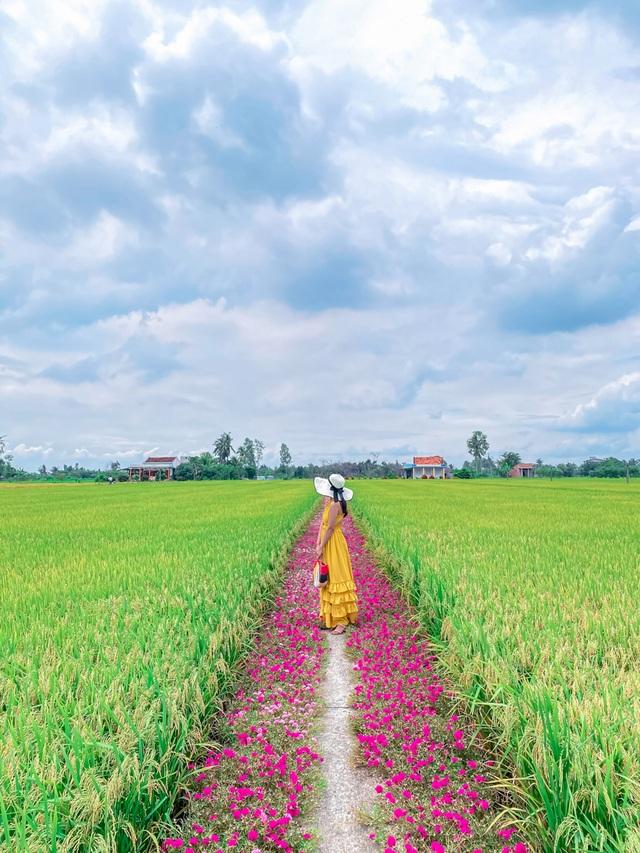 Hướng dẫn tới đường hoa mười giờ đẹp nhất Gò Công - 7