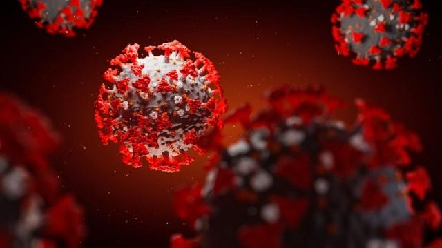 """Phát hiện kháng thể có thể """"vô hiệu hóa hoàn toàn"""" virus SARS-CoV-2 - 1"""