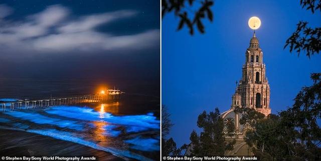 Ảnh phơi cá của Việt Nam lọt top ảnh đẹp tại giải ảnh quốc tế - 7