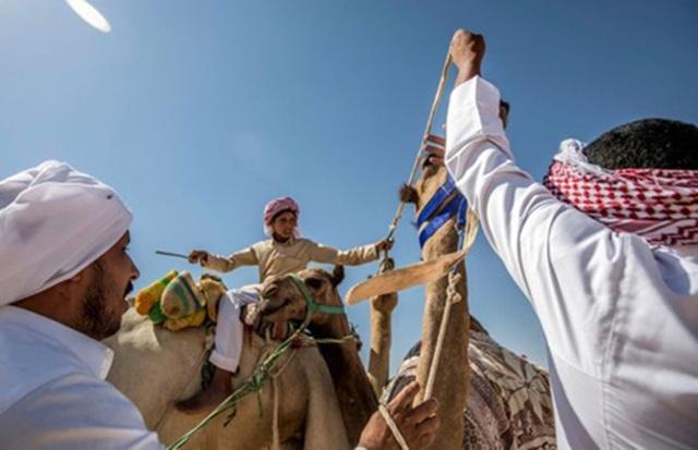 """Đường đua các """"chiến binh lưng gù"""" tại Sinai sôi động trở lại - 7"""