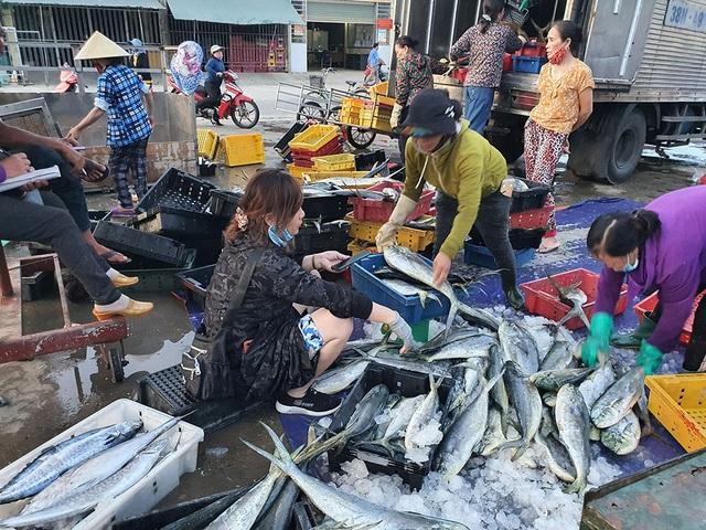 Chạy bão ngư dân vẫn trúng mẻ cá dũa thu hàng chục triệu đồng - 3