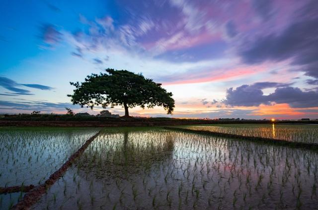17 khoảnh khắc nhiếp ảnh khiến người xem yêu mến Việt Nam - 13