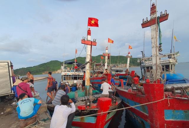Chạy bão ngư dân vẫn trúng mẻ cá dũa thu hàng chục triệu đồng - 2