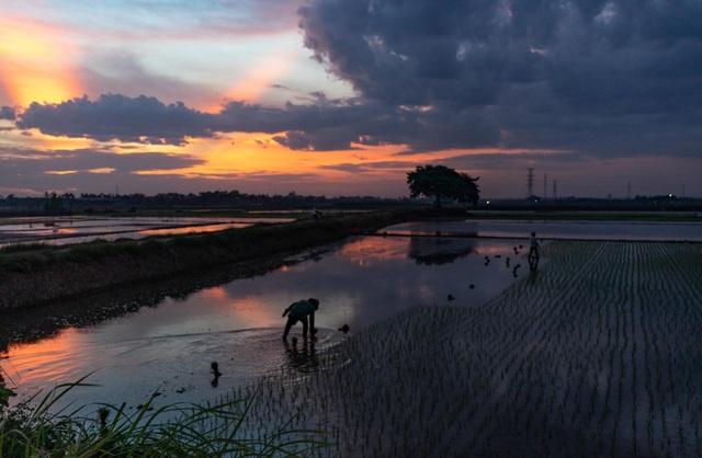 17 khoảnh khắc nhiếp ảnh khiến người xem yêu mến Việt Nam - 16