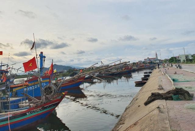 Chạy bão ngư dân vẫn trúng mẻ cá dũa thu hàng chục triệu đồng - 1