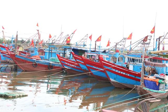 Quảng Trị khẩn trương sơ tán dân đến nơi an toàn trú bão - 4