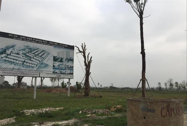Cả trăm dự án bỏ hoang ở Hà Nội: Khi nào thu hồi? - 1