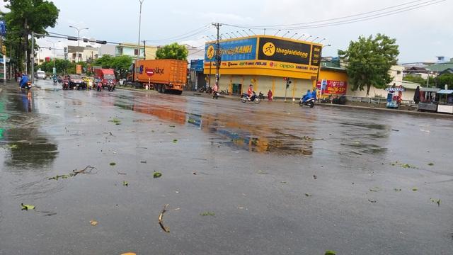 Đà Nẵng: Nhiều cây xanh bật gốc, người dân ra cửa biển bắt cá sau bão - 1
