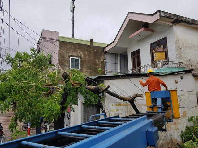Đà Nẵng: Nhiều cây xanh bật gốc, người dân ra cửa biển bắt cá sau bão - 19