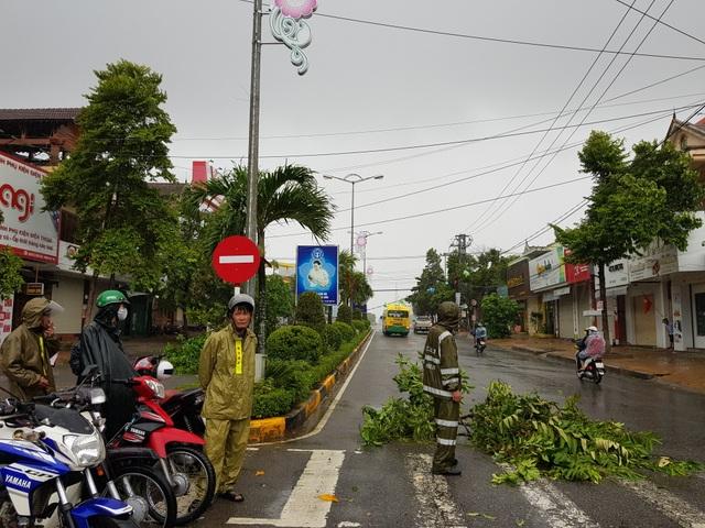 Đà Nẵng: Nhiều cây xanh bật gốc, người dân ra cửa biển bắt cá sau bão - 17