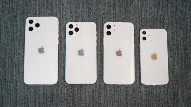 iPhone 12 Pro Max giá trên trời hơn 100 triệu sẽ vẫn có người mua - 1