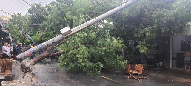 """Điện lực Đà Nẵng phản hồi vụ cột điện """"không lõi thép"""" bị gãy do bão số 5 - 2"""