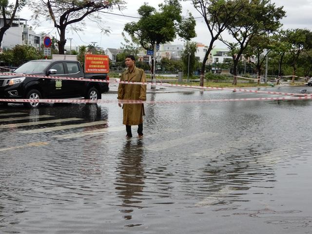 Đà Nẵng: Nhiều cây xanh bật gốc, người dân ra cửa biển bắt cá sau bão - 2