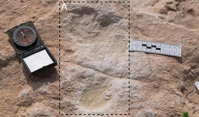 Dấu chân người 120.000 năm tuổi được phát hiện ở Ả Rập Xê-Út - 1