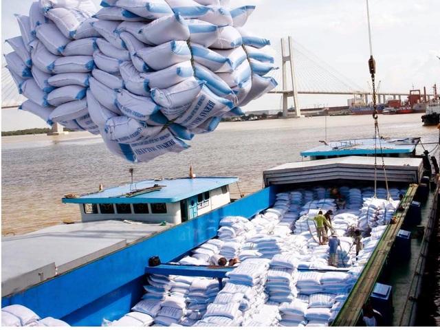 """Xuất khẩu gạo đánh mất """"cơ hội vàng"""", doanh nghiệp tiếp tục khó khăn - 1"""