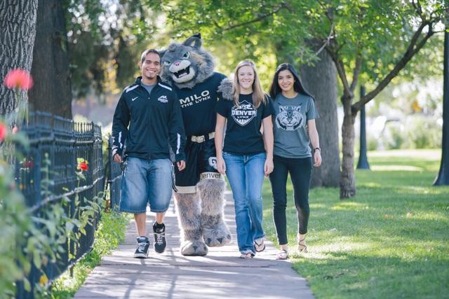 Học bổng hào phóng từ Colorado Denver - trường Top nghiên cứu với cơ hội việc làm rộng mở - 2
