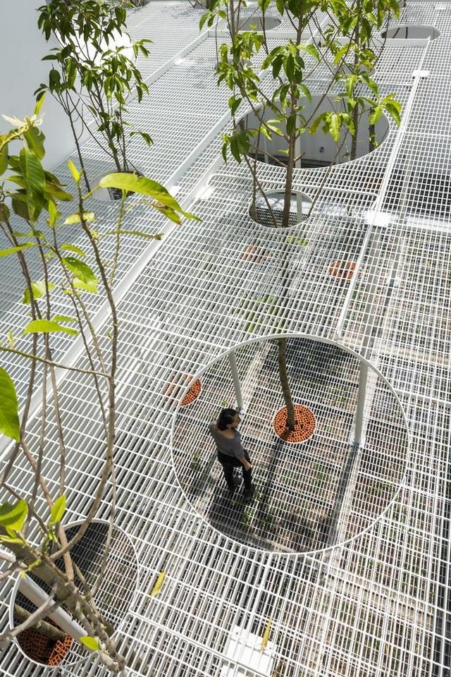 Giếng trời hình giọt nước khổng lồ trong căn biệt thự ở Sài Gòn - 7