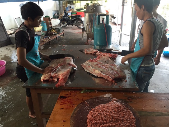 Nhà giàu Việt chi trăm triệu đồng mua cá song vang nặng cả tạ về... ăn gỏi - 2