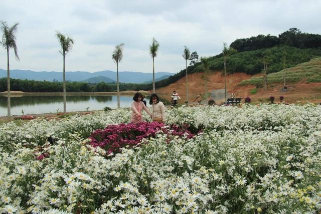 Thung lũng hoa Phủ Quỳ, điểm check in tuyệt đẹp giữa núi đồi xứ Nghệ - 3