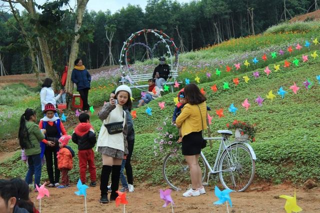 Thung lũng hoa Phủ Quỳ, điểm check in tuyệt đẹp giữa núi đồi xứ Nghệ - 7