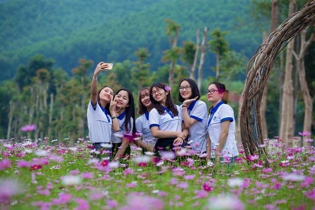 Thung lũng hoa Phủ Quỳ, điểm check in tuyệt đẹp giữa núi đồi xứ Nghệ - 14