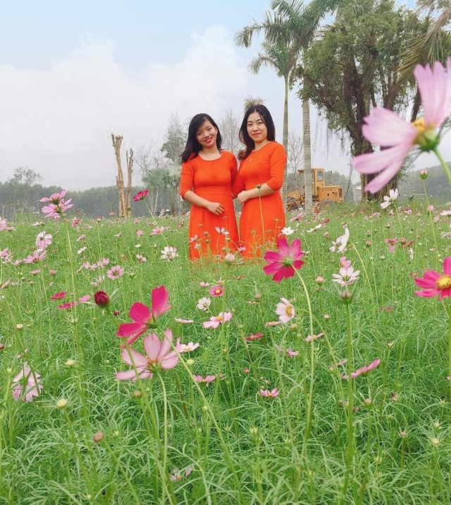 Thung lũng hoa Phủ Quỳ, điểm check in tuyệt đẹp giữa núi đồi xứ Nghệ - 15