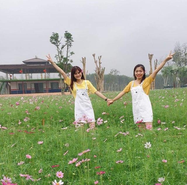 Thung lũng hoa Phủ Quỳ, điểm check in tuyệt đẹp giữa núi đồi xứ Nghệ - 18