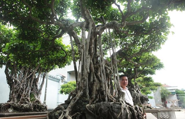 """Sanh cổ """"Ngũ long tranh châu"""" mua từ năm 1996 với giá 100 cây vàng - 4"""