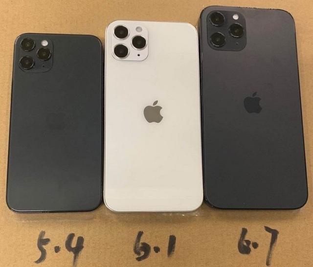Lộ diện tên gọi chính thức của 4 phiên bản iPhone 12, có thêm 12 mini - 2