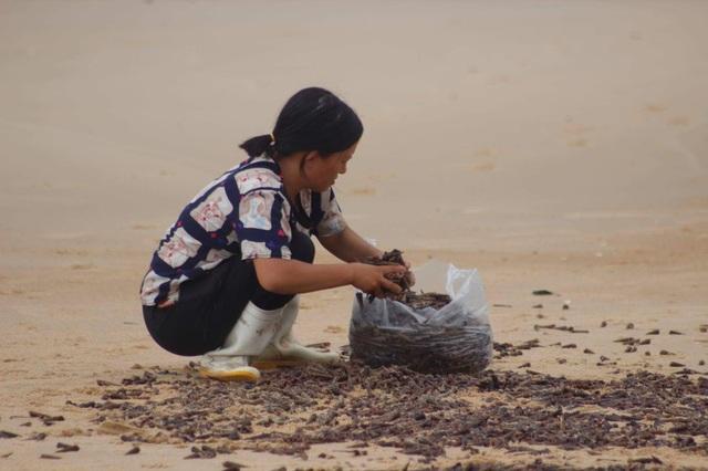 Dân đổ xô ra biển nhặt ốc xoăn dạt vào bờ sau bão - 3