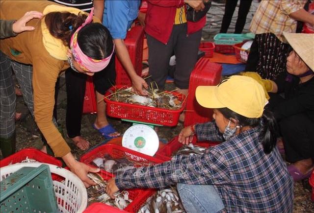 Độc đáo chợ cá Cồn Gò, Hà Tĩnh - 1