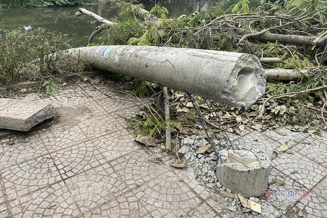 Công bố nguyên nhân 600 cột điện bị hạ gục trong 30 phút mưa bão - 1