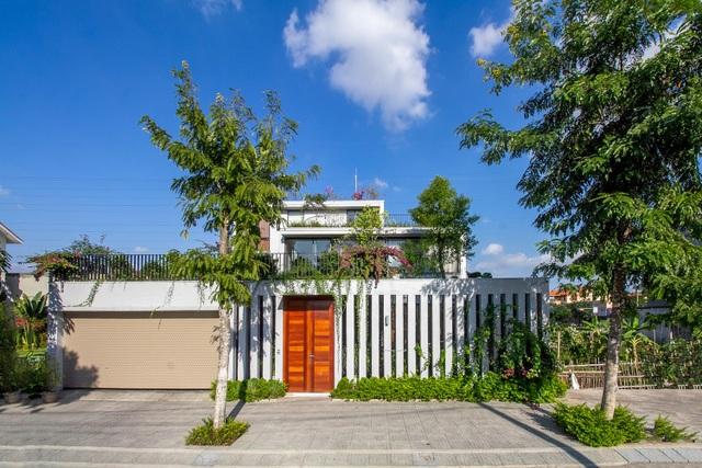 Mãn nhãn với ngôi nhà đẹp như ốc đảo xanh ở Ninh Bình - 2