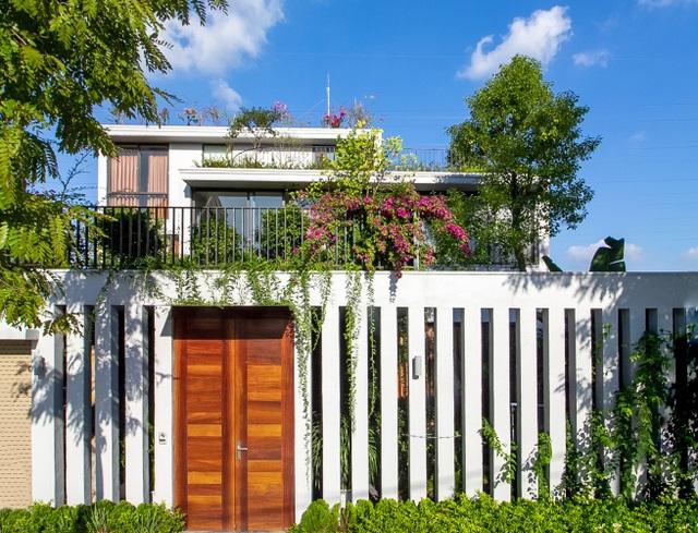 Mãn nhãn với ngôi nhà đẹp như ốc đảo xanh ở Ninh Bình - 12