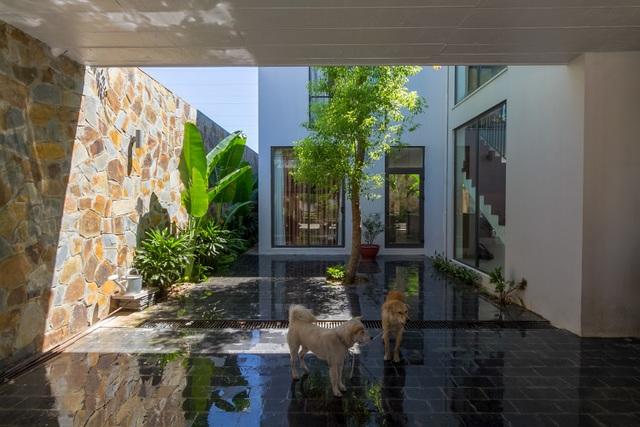 Mãn nhãn với ngôi nhà đẹp như ốc đảo xanh ở Ninh Bình - 5
