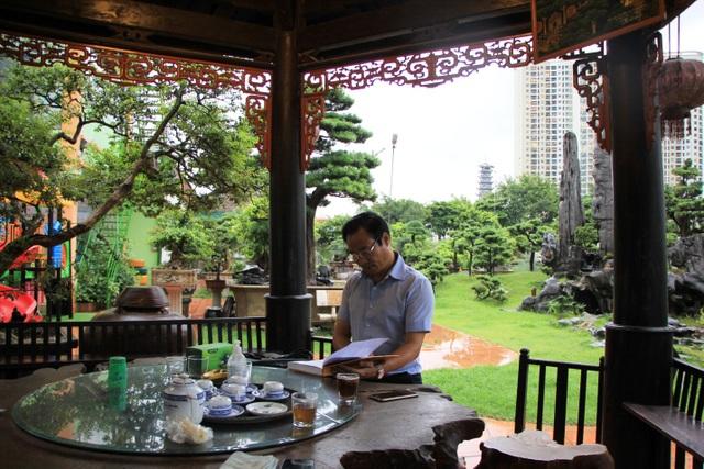 Tay chơi Hà Nội bán nhà trên phố để sở hữu cây tùng hơn 300 năm tuổi - 2
